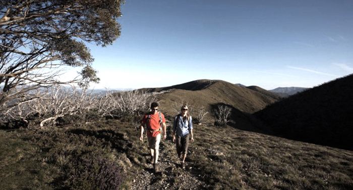 Bush/Mountain Walking